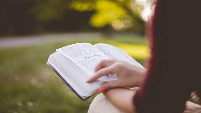 公園での読書