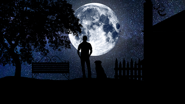 川柳はブロガーも詠む 満月の見える状況