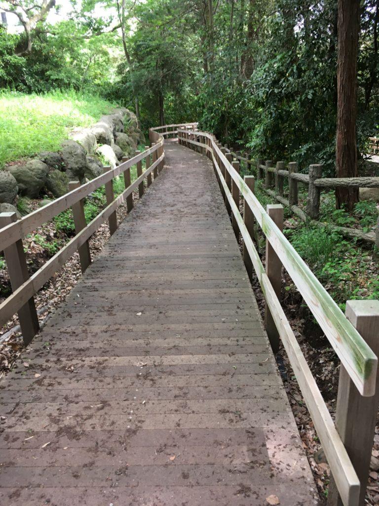 柿田川 木製八つ橋