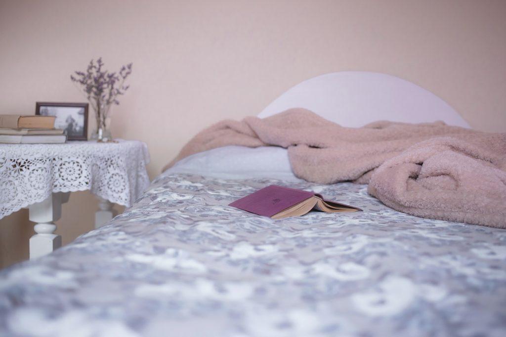 ゴキブリが出てきたベッド