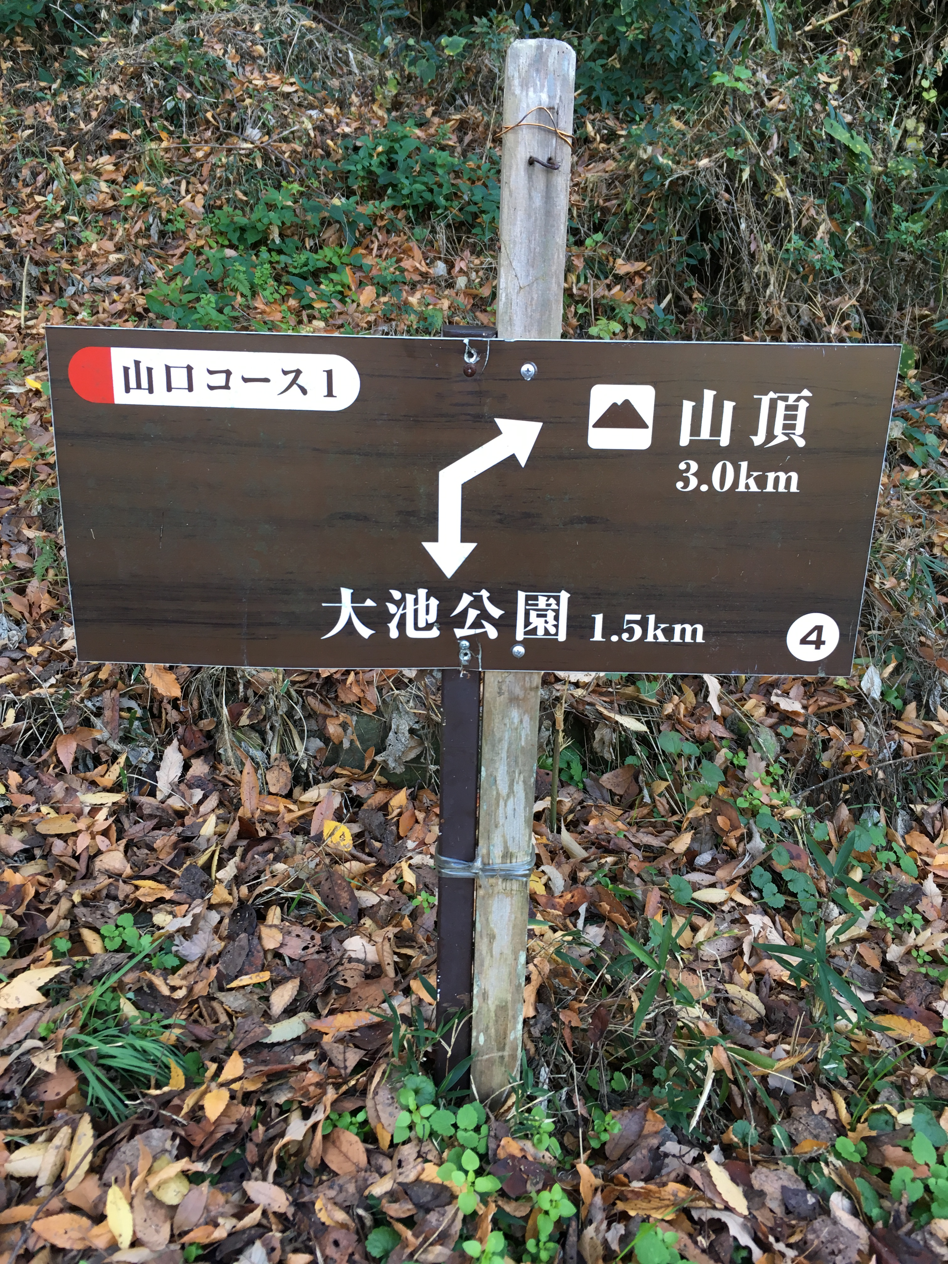ダイエット登山 山頂まで3キロ